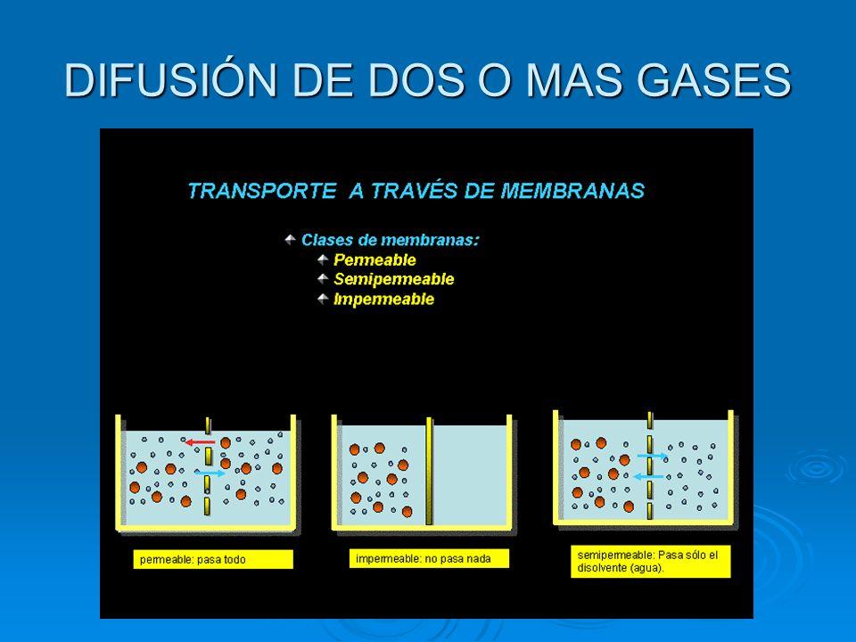 DIFUSIÓN DE DOS O MAS GASES