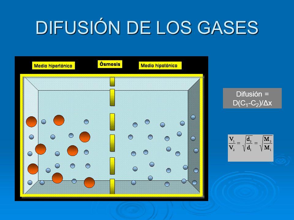 DIFUSIÓN DE LOS GASES Difusión = D(C1-C2)/Δx