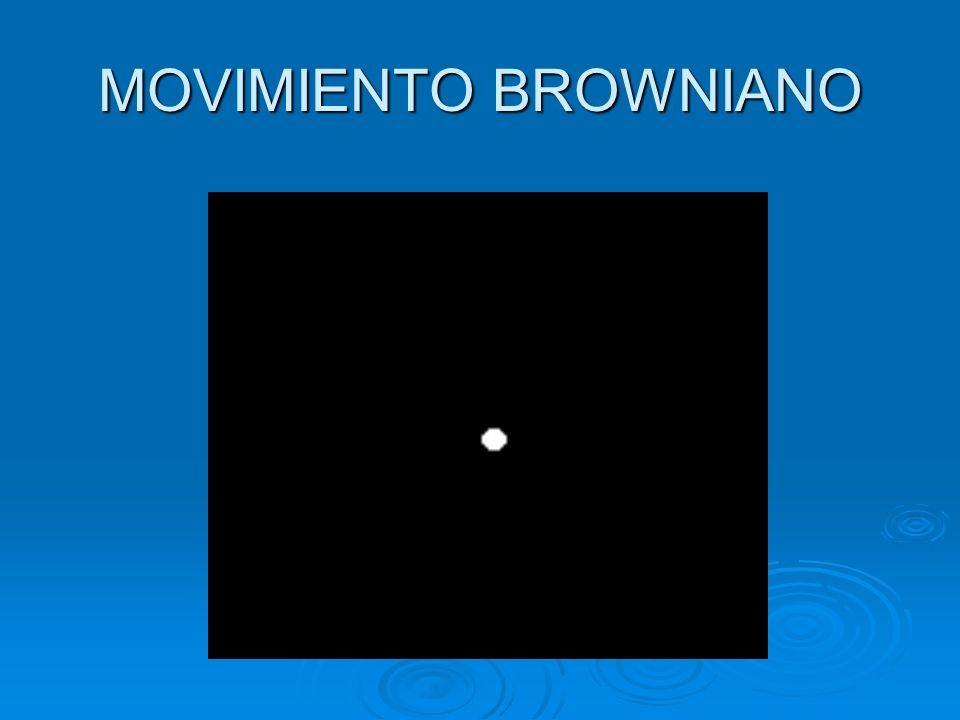 MOVIMIENTO BROWNIANO