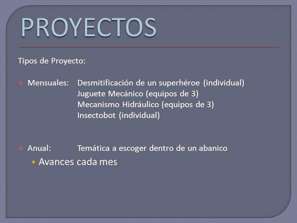 PROYECTOS Avances cada mes Tipos de Proyecto: