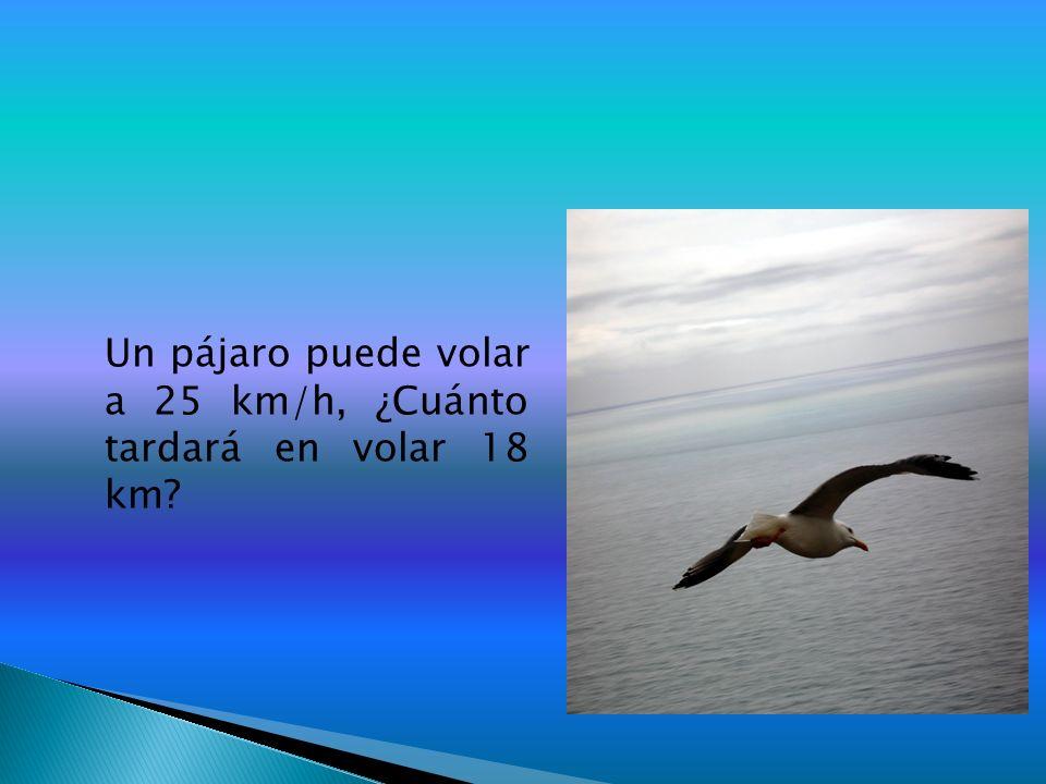 Un pájaro puede volar a 25 km/h, ¿Cuánto tardará en volar 18 km