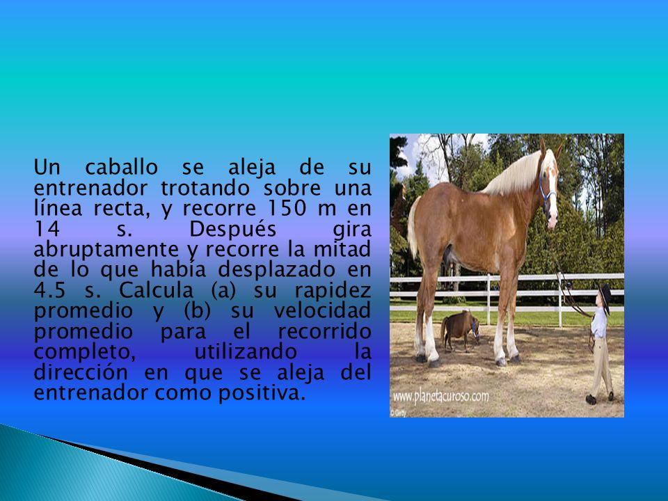 Un caballo se aleja de su entrenador trotando sobre una línea recta, y recorre 150 m en 14 s.