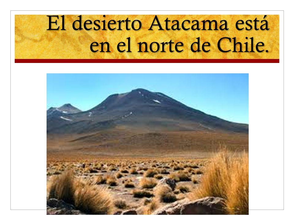 El desierto Atacama está en el norte de Chile.