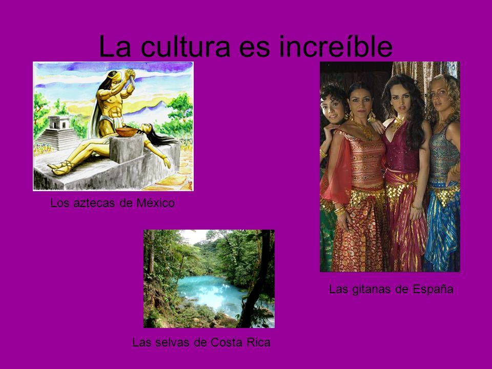 La cultura es increíble