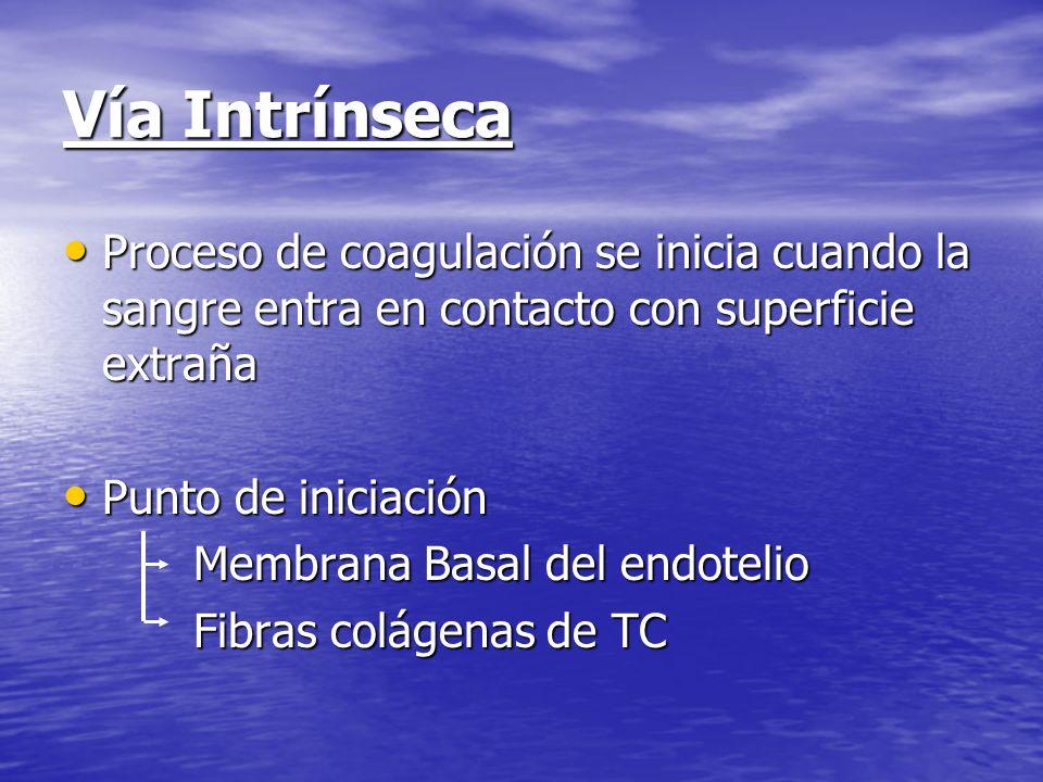 Vía Intrínseca Proceso de coagulación se inicia cuando la sangre entra en contacto con superficie extraña.