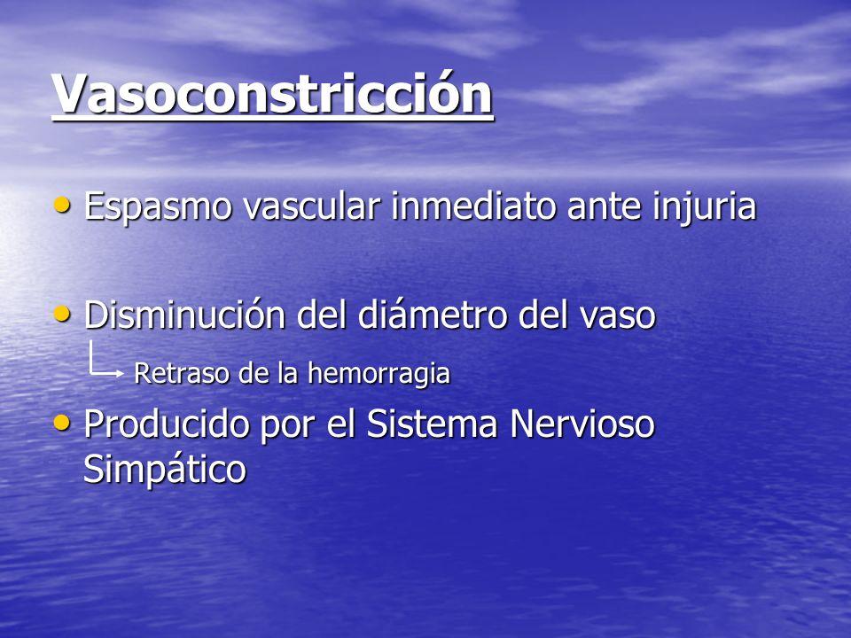 Vasoconstricción Espasmo vascular inmediato ante injuria