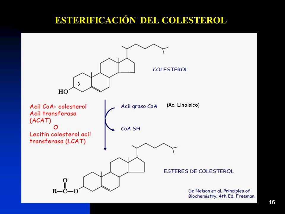 ESTERIFICACIÓN DEL COLESTEROL