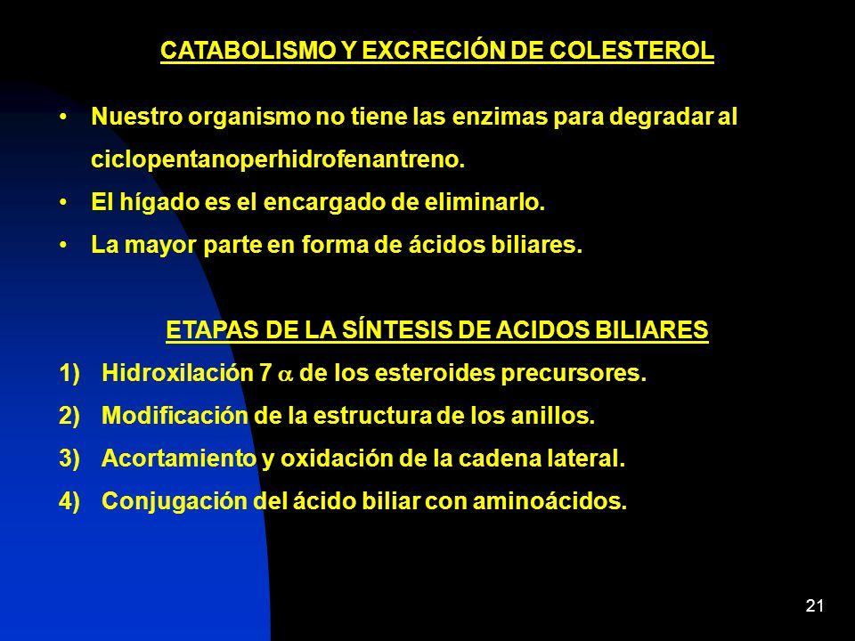 CATABOLISMO Y EXCRECIÓN DE COLESTEROL