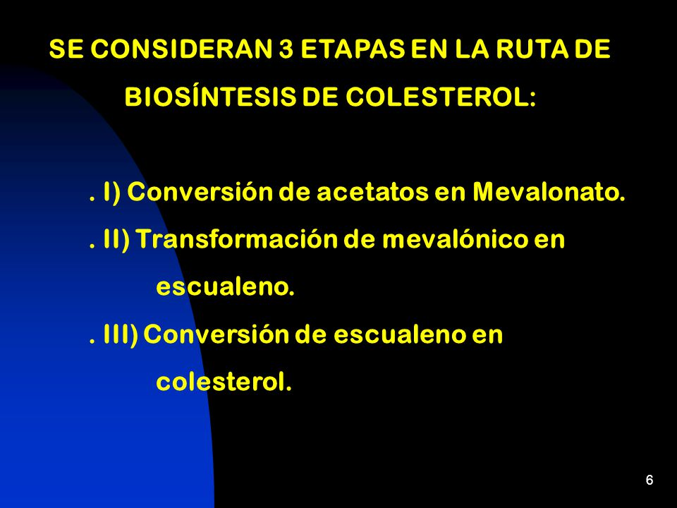 SE CONSIDERAN 3 ETAPAS EN LA RUTA DE BIOSÍNTESIS DE COLESTEROL: