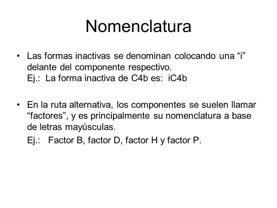 NomenclaturaLas formas inactivas se denominan colocando una i delante del componente respectivo. Ej.: La forma inactiva de C4b es: iC4b.