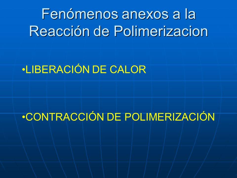 Fenómenos anexos a la Reacción de Polimerizacion