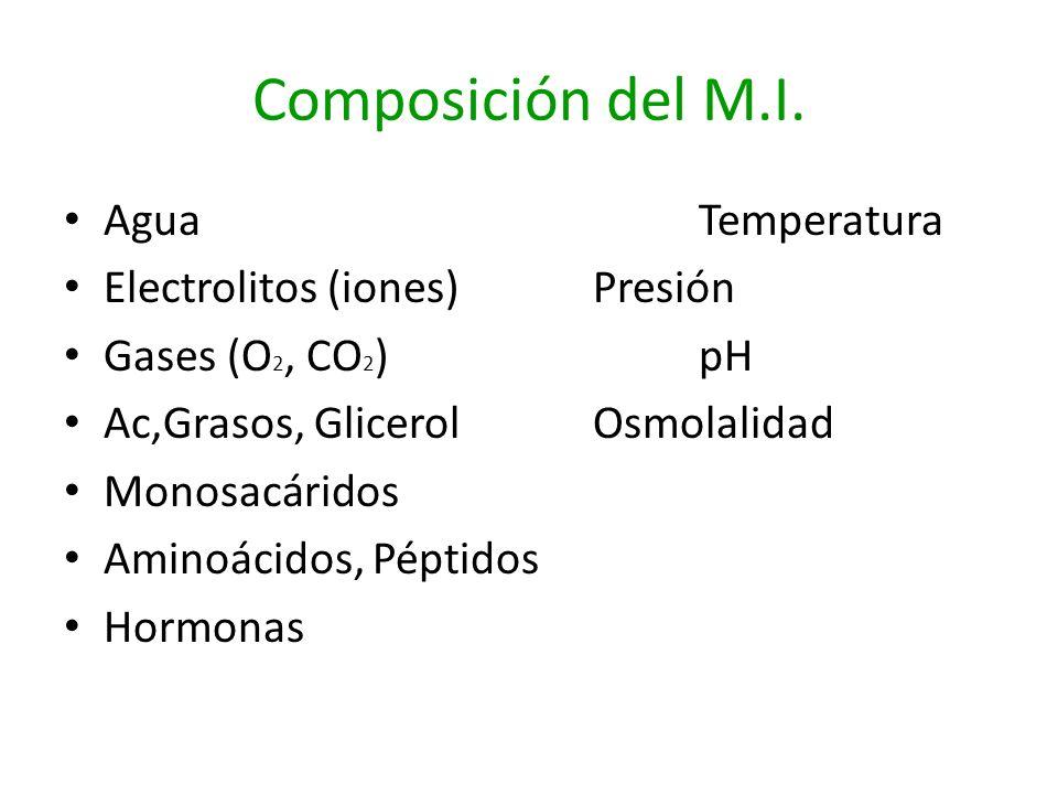 Composición del M.I. Agua Temperatura Electrolitos (iones) Presión