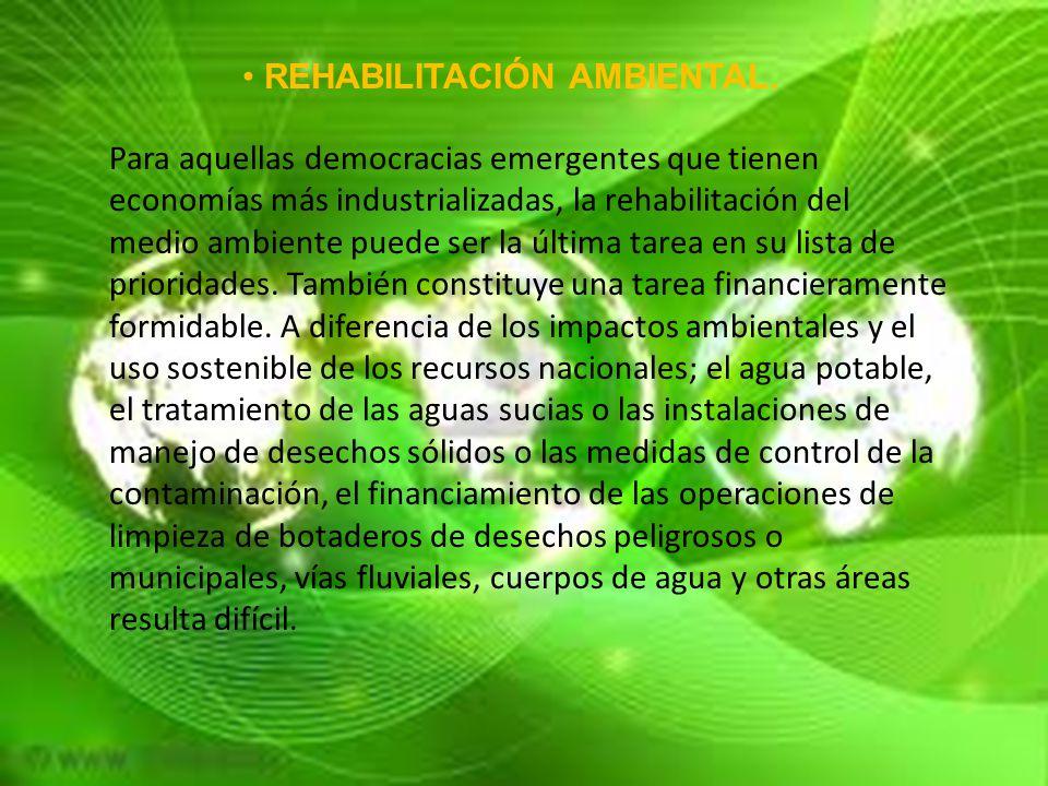 REHABILITACIÓN AMBIENTAL.