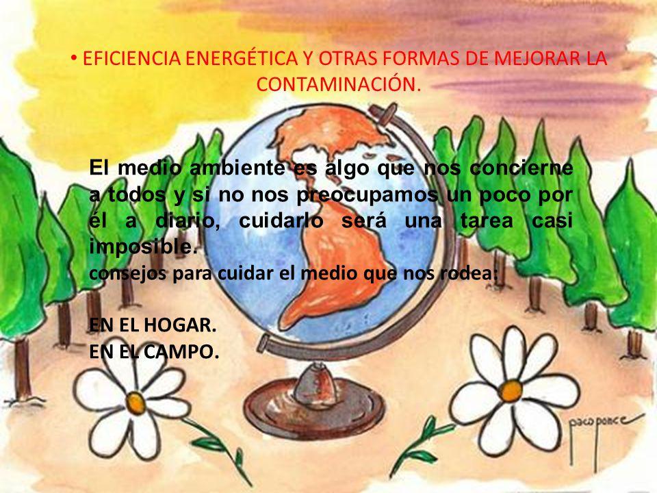 EFICIENCIA ENERGÉTICA Y OTRAS FORMAS DE MEJORAR LA CONTAMINACIÓN.