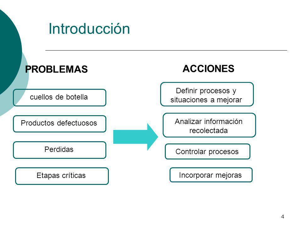 Introducción PROBLEMAS ACCIONES