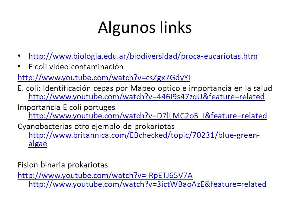 Algunos links http://www.biologia.edu.ar/biodiversidad/proca-eucariotas.htm. E coli video contaminación.
