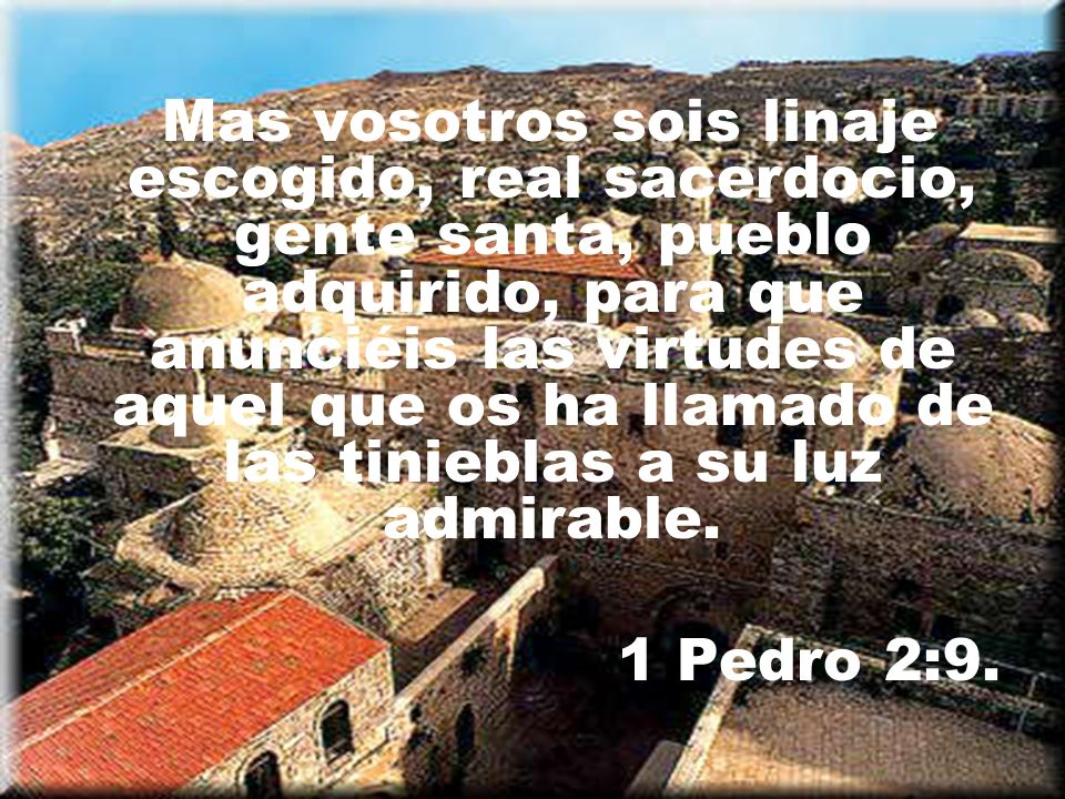 Mas vosotros sois linaje escogido, real sacerdocio, gente santa, pueblo adquirido, para que anunciéis las virtudes de aquel que os ha llamado de las tinieblas a su luz admirable.