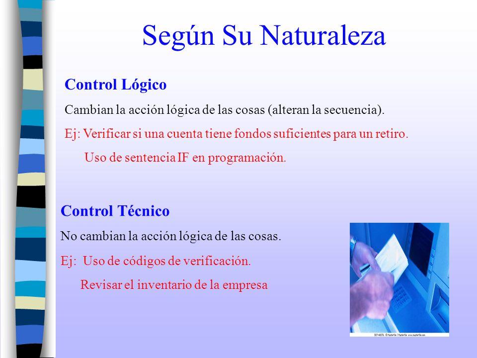 Según Su Naturaleza Control Lógico Control Técnico