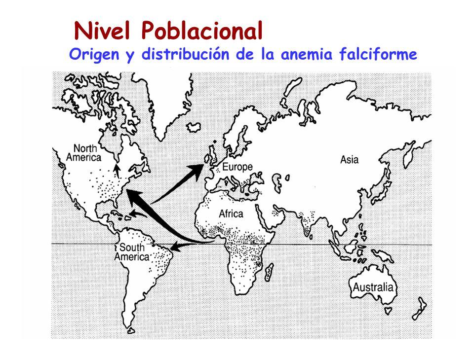 Poblaciones Nivel Poblacional