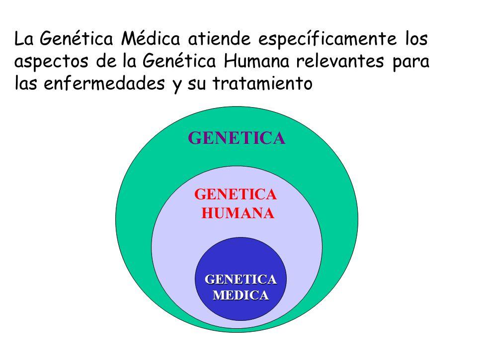 La Genética Médica atiende específicamente los aspectos de la Genética Humana relevantes para las enfermedades y su tratamiento