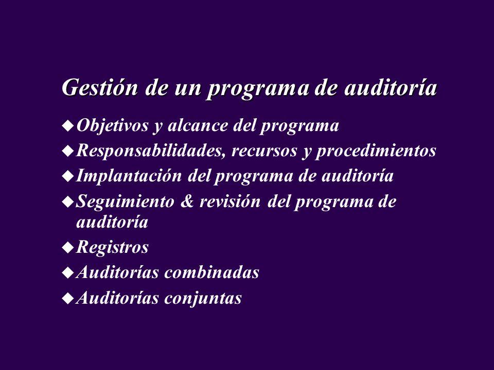 Gestión de un programa de auditoría