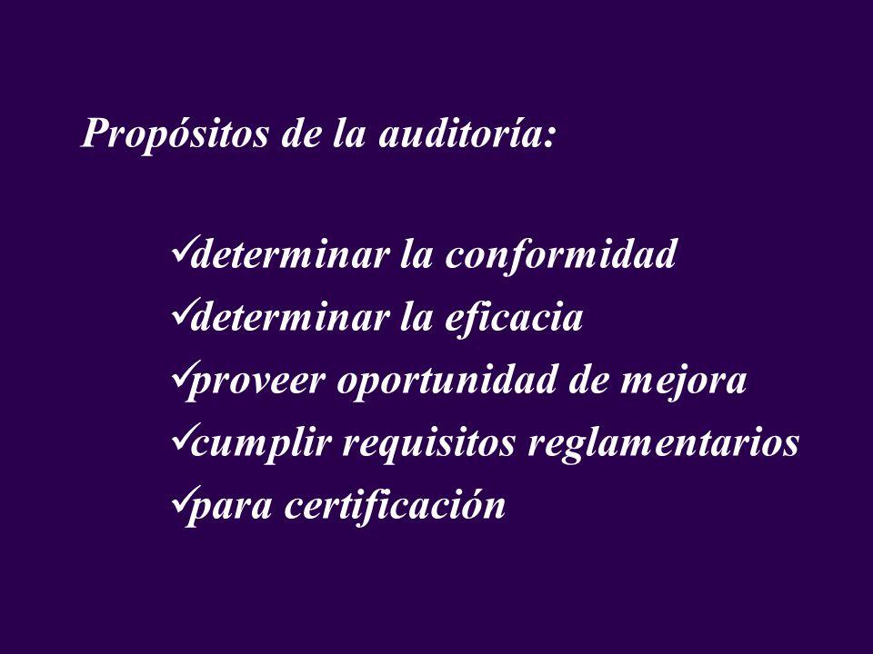 Propósitos de la auditoría: