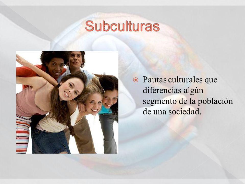 Subculturas Pautas culturales que diferencias algún segmento de la población de una sociedad.