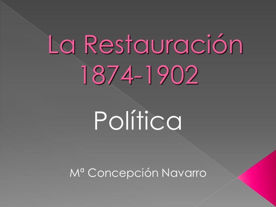 Política Mª Concepción Navarro