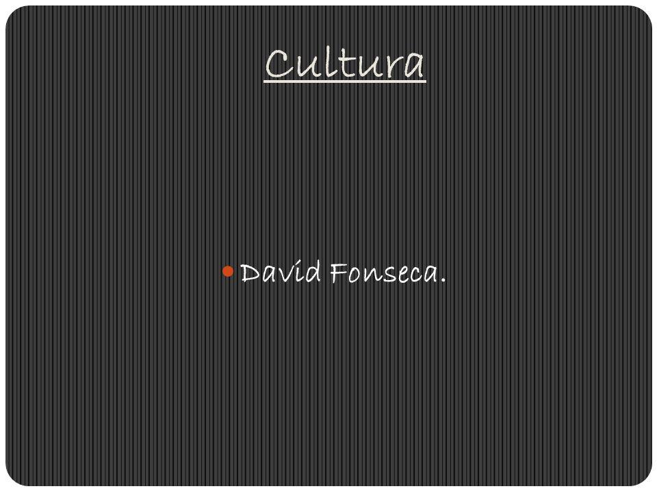 Cultura David Fonseca.