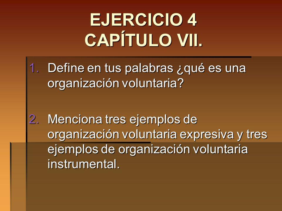 EJERCICIO 4 CAPÍTULO VII.