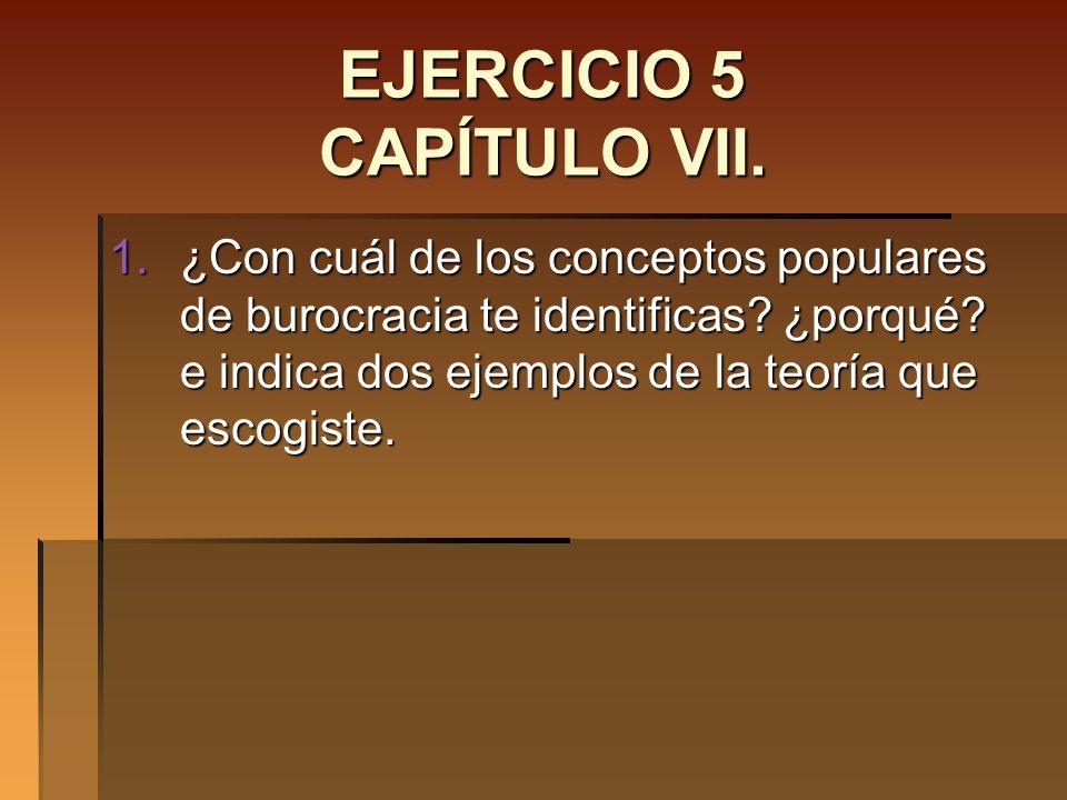 EJERCICIO 5 CAPÍTULO VII.