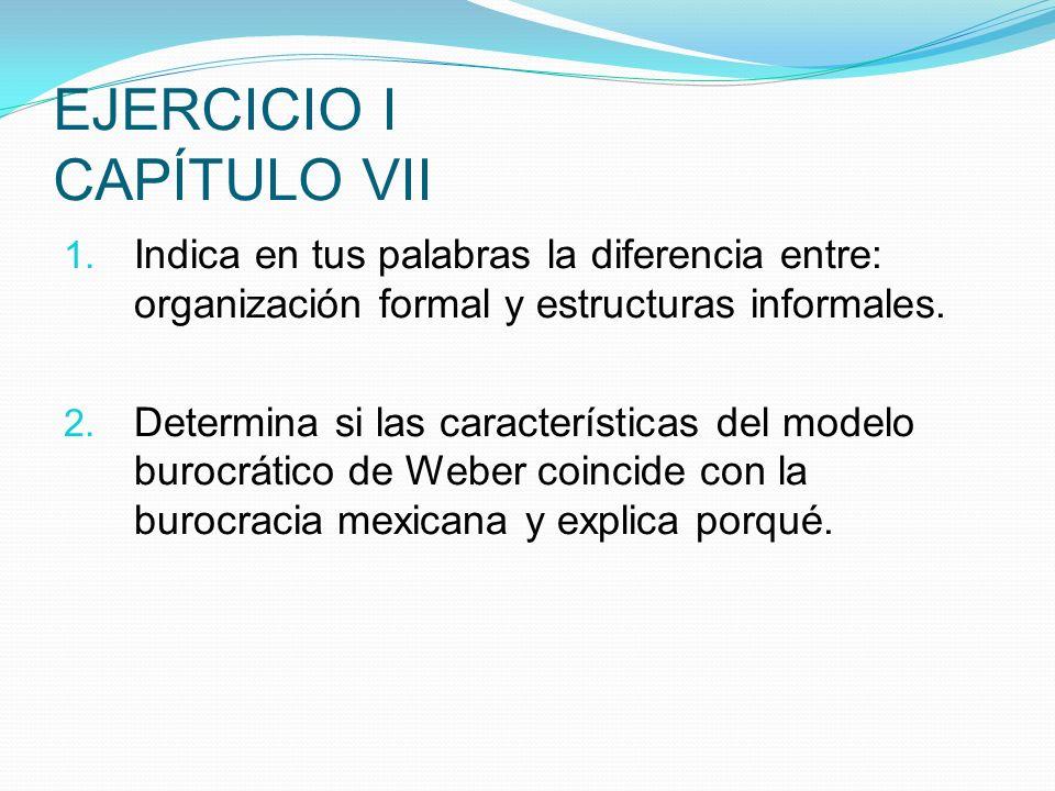 EJERCICIO I CAPÍTULO VII