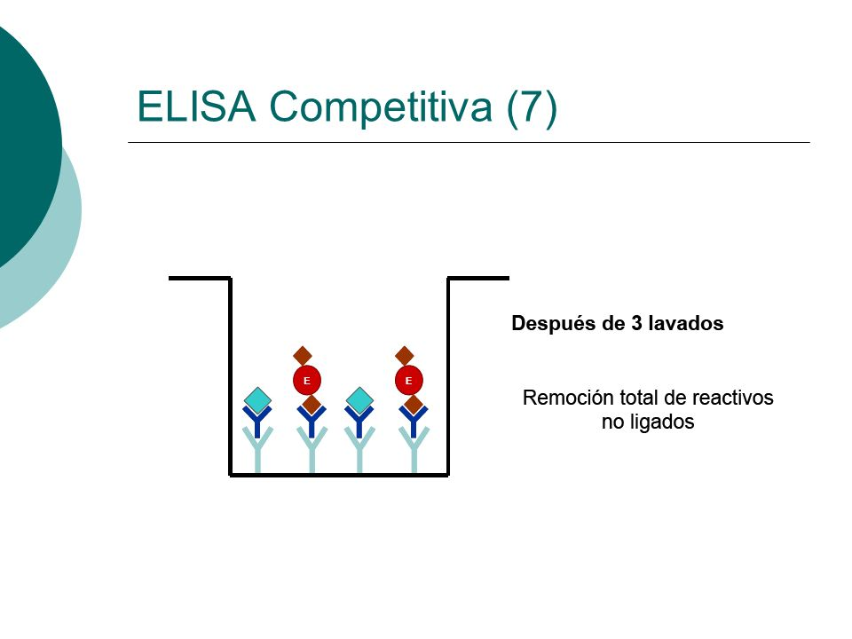 ELISA Competitiva (7)