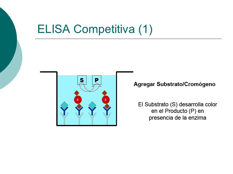 ELISA Competitiva (1)