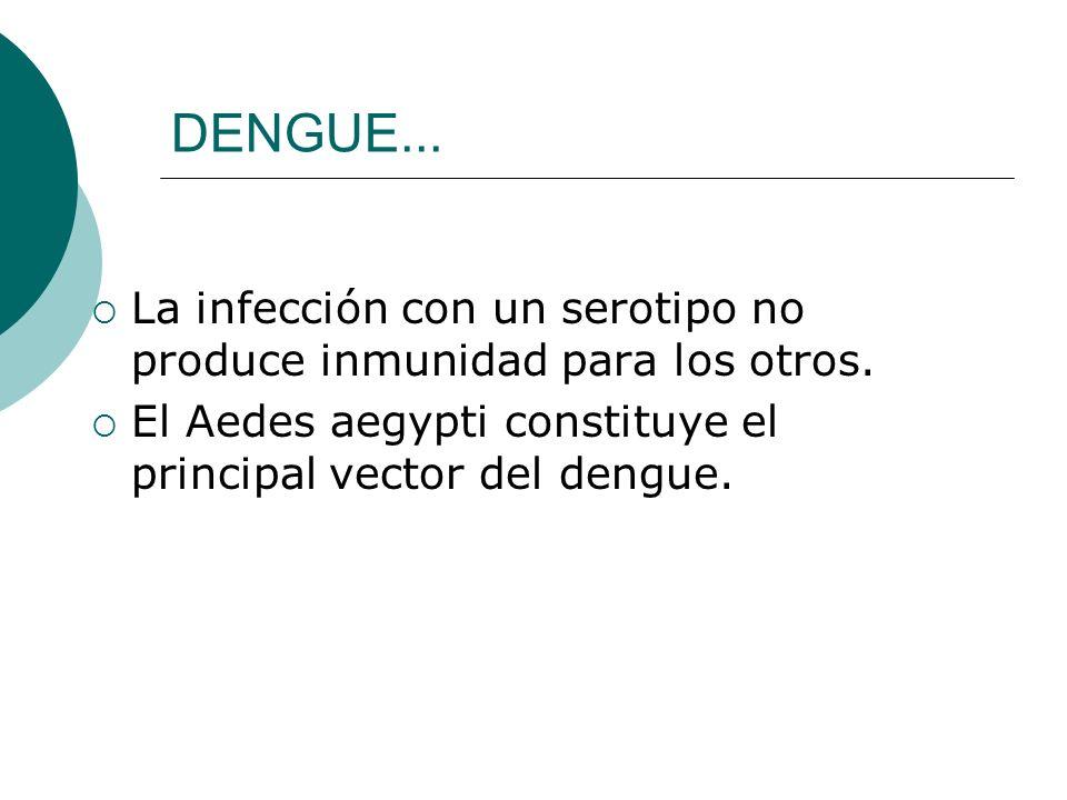 DENGUE...La infección con un serotipo no produce inmunidad para los otros.