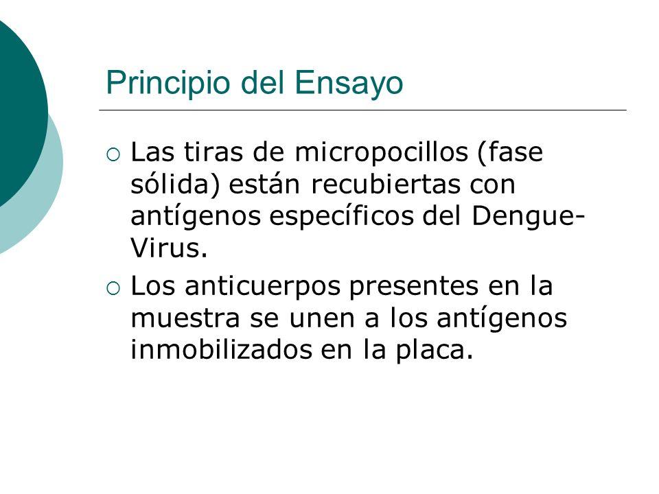 Principio del EnsayoLas tiras de micropocillos (fase sólida) están recubiertas con antígenos específicos del Dengue- Virus.