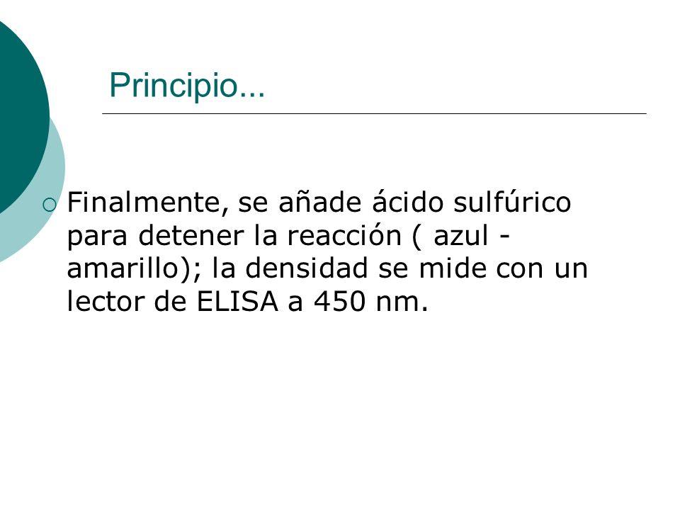 Principio...Finalmente, se añade ácido sulfúrico para detener la reacción ( azul - amarillo); la densidad se mide con un lector de ELISA a 450 nm.