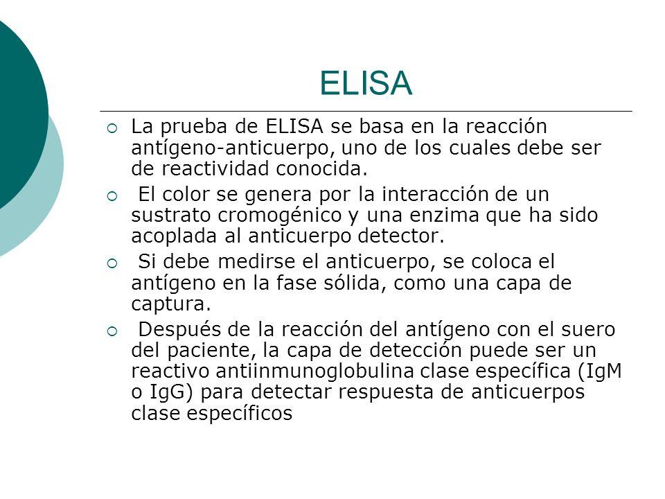 ELISA La prueba de ELISA se basa en la reacción antígeno-anticuerpo, uno de los cuales debe ser de reactividad conocida.