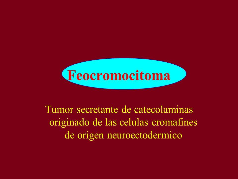 Feocromocitoma Tumor secretante de catecolaminas originado de las celulas cromafines de origen neuroectodermico.