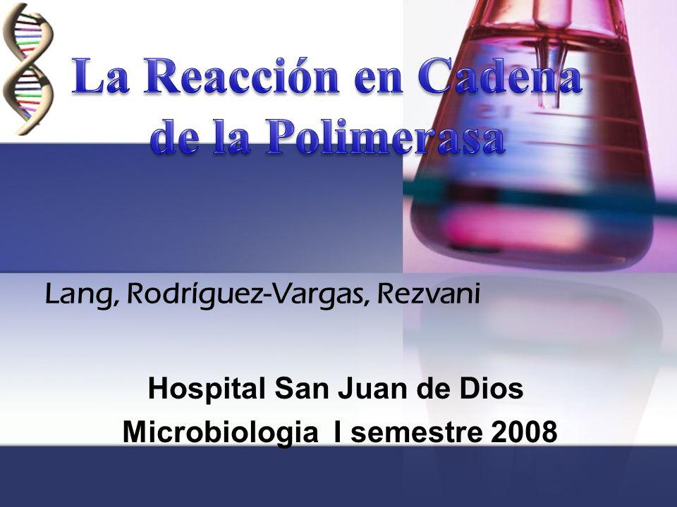 Lang, Rodríguez-Vargas, Rezvani