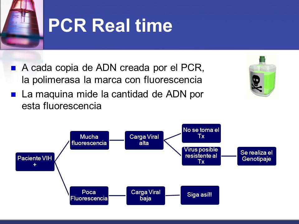 PCR Real time A cada copia de ADN creada por el PCR, la polimerasa la marca con fluorescencia.