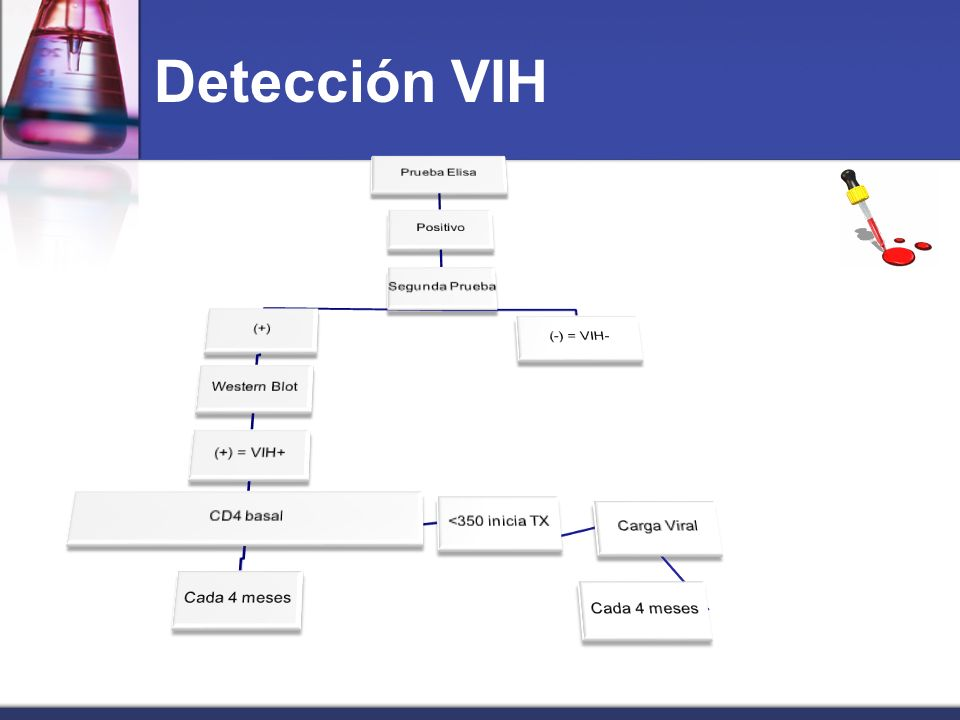Detección VIH Prueba Elisa Positivo Segunda Prueba (-) = VIH- (+)