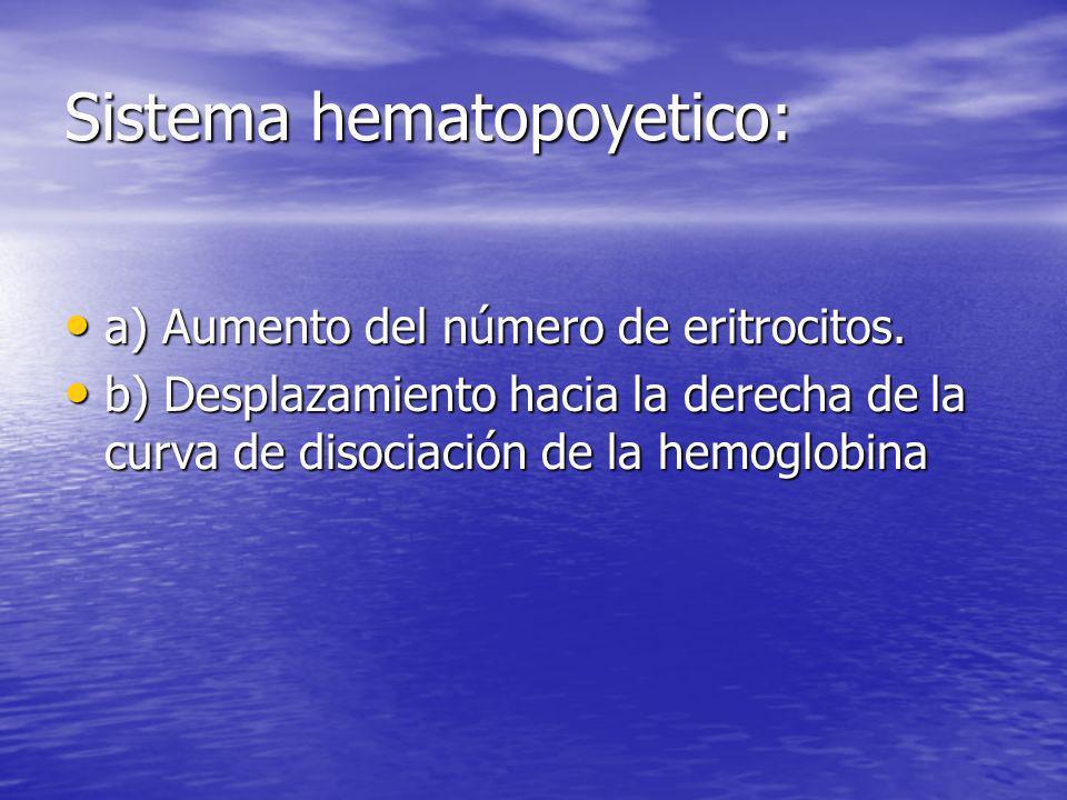 Sistema hematopoyetico: