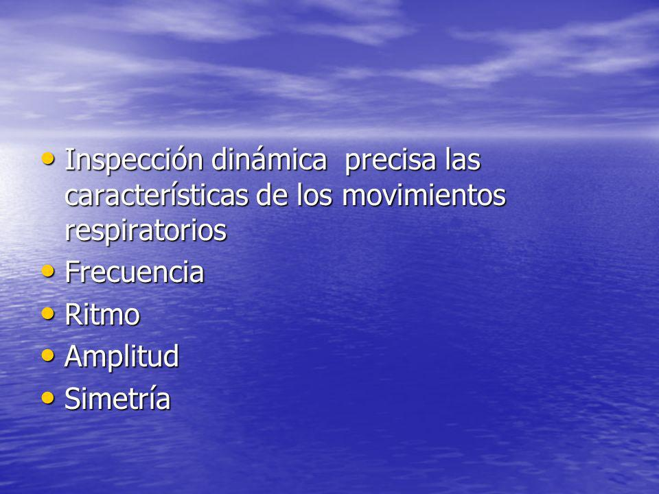 Inspección dinámica precisa las características de los movimientos respiratorios