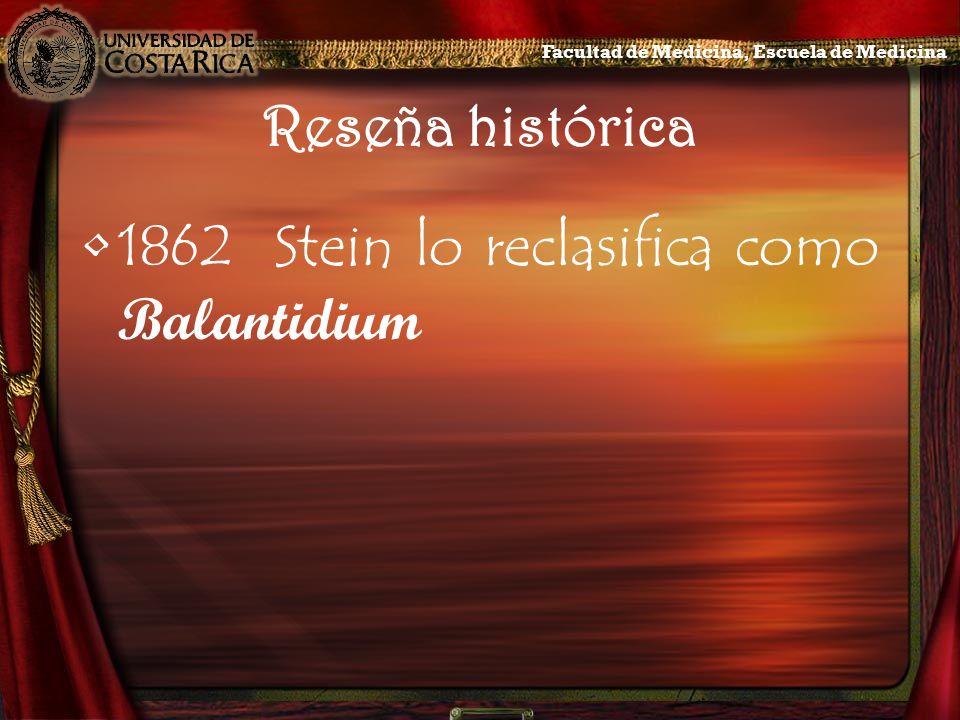 1862 Stein lo reclasifica como Balantidium