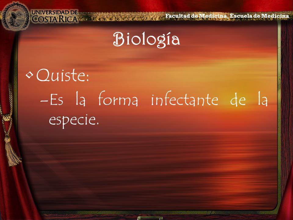 Biología Quiste: Es la forma infectante de la especie.