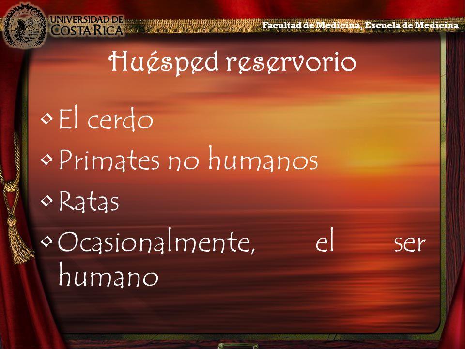 Ocasionalmente, el ser humano