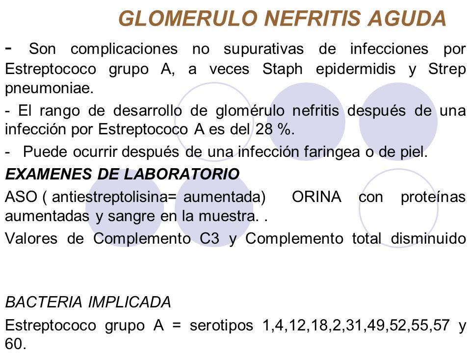 GLOMERULO NEFRITIS AGUDA