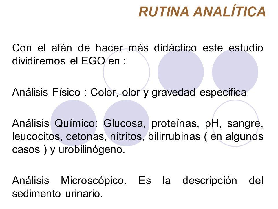 RUTINA ANALÍTICA Con el afán de hacer más didáctico este estudio dividiremos el EGO en : Análisis Físico : Color, olor y gravedad especifica.