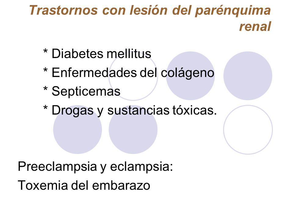 Trastornos con lesión del parénquima renal